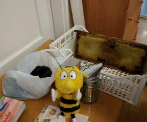 Méhész bemutató